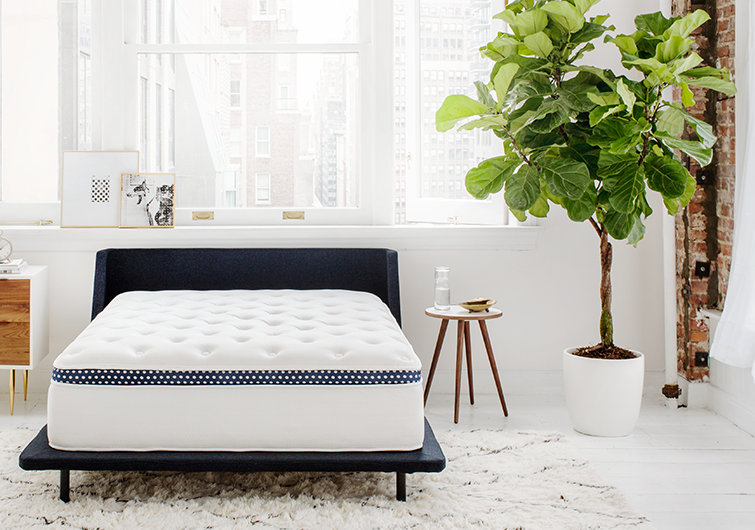 Amerisleep vs. WinkBeds: The Best Mattress' Recommendation